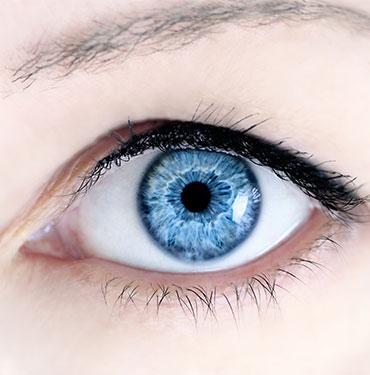 eyemed Augenärzte - Leistungen